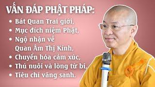 Vấn đáp Phật pháp: Bát Quan Trai giới, mục đích niệm Phật, ngộ nhận về Quan Âm Thị Kính,...