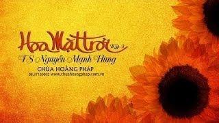 Hoa Mặt Trời kỳ 3 - Tiến sĩ Nguyễn Mạnh Hùng