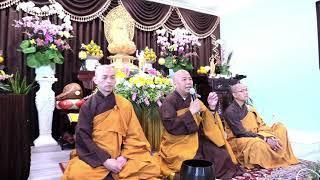Bảy Bước Chân Màu  Nhiệm, Thích Tánh Tuệ, 06/2021