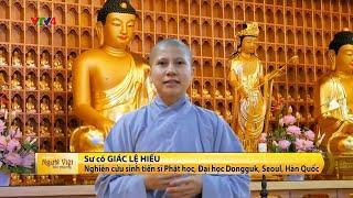 VTV4 đưa tin về khóa tu Ngày An Lạc lần 2 tại Busan của Đạo tràng Đạo Phật Ngày Nay Hàn Quốc