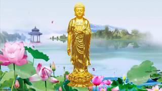 Namo Amituofo Nam Mô A Di Đà Phật (Niệm Phật)