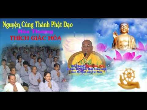 Nguyện Cùng Thành Phật Đạo