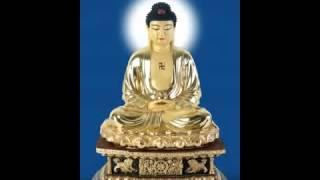 Tuyển Trạch Bổn Nguyện Niệm Phật Tập (Thích Tịnh Nghiêm dịch) (Trọn Bài, 2 Phần)