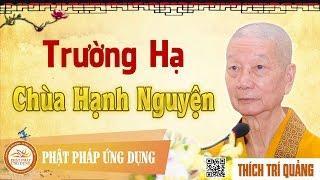 Trường hạ chùa Hạnh Nguyện - HT. Thích Trí Quảng