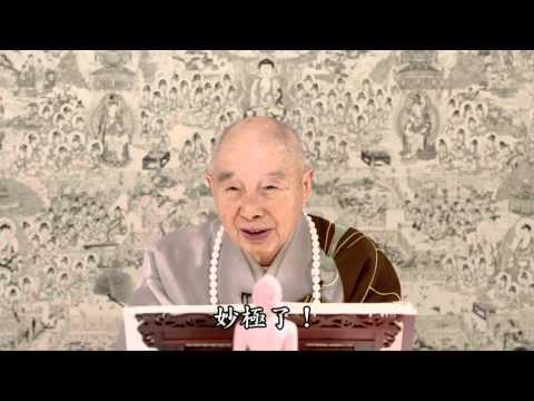 Tịnh Độ Đại Kinh Khoa Chú (Tập 13, 2014) (Cư Sĩ Vọng Tây cẩn dịch)