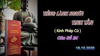 Tiếng Lành Người Tinh Tấn (Kinh PC 24) Thầy Thích Pháp Hòa.Tv Trúc Lâm.Ngày 18.10.2020
