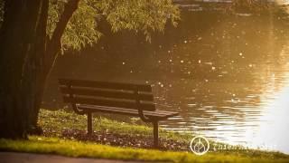 5 Điều đem đến Bình An Và Hạnh Phúc