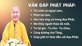 Vấn đáp Phật pháp: Tái sinh và ngoại cảm, Phật tại tâm, văn hóa ứng xử trong đạo Phật,...