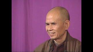 Ai Đang Đi Tìm Phật Pháp-TS Thích Nhất Hạnh giảng Lâm Tế Ngữ Lục [bài 16](30-11- 2003, XM, Làng Mai)