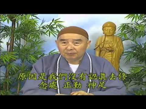 Phật Thuyết Thập Thiện Nghiệp Đạo Kinh (2001) (Tập 59 Và 60)