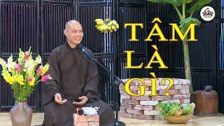 Hỏi đáp Phật Pháp| Thiền có hai đối tượng là thân & tâm. Vậy tâm là gì? |  Thầy Trí Chơn