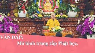 Vấn đáp: Mô hình trung cấp Phật học | Thích Nhật Từ