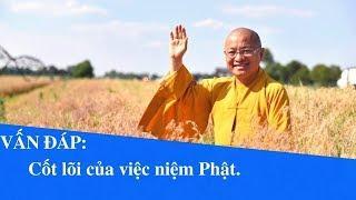 Vấn đáp: Cốt lõi của việc niệm Phật   Thích Nhật Từ