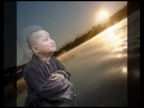 Còn Đâu Ngày Ấy (Những Ca Khúc Phật Giáo) (Rất Hay)