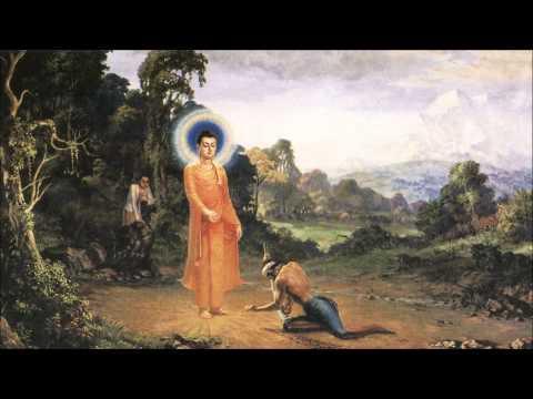 Phát Khởi Bồ Tát Thù Thắng Chí Nhạo Kinh Lược Giảng (Chuyển Ngữ: Bửu Quang Tự đệ tử Như Hòa)