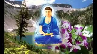 Tham Tiền Niệm Phật