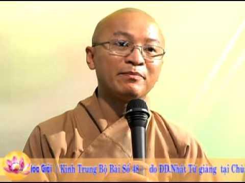 Kinh trung bộ 11: Hòa hợp hòa giải - Thích Nhật Từ