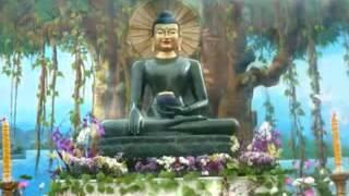 """Nhạc """"Khai Thị Niệm Phật"""""""