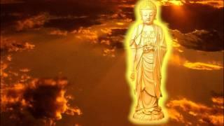 Phật Học Và Y Học (Nguyên Tác: Bác Sĩ Quách Huệ Trân, Pháp Sư Đạo Chứng)