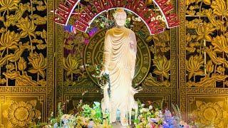 Tăng đoàn Chùa Giác Ngộ lạy vạn Phật mùa An Cư Kiết Hạ tại Chùa Giác Ngộ, ngày 25-06-2021