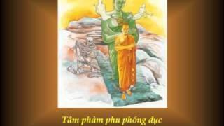 KINH PHÁP CÚ - 03 Phẩm TÂM Ý - Nhạc Võ Tá Hân - Thơ Tuệ Kiên