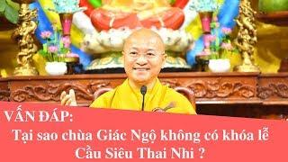 Vấn đáp: Tại sao chùa Giác Ngộ không có khóa lễ Cầu Siêu Thai Nhi ?   Thích Nhật Từ