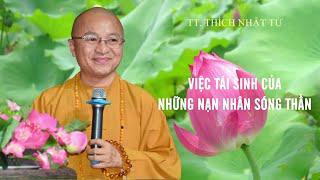 Vấn đáp: Việc TÁI SINH của những NẠN NHÂN SÓNG THẦN | TT. Thích Nhật Từ