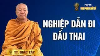 Nghiệp Dẫn Đi Đầu Thai