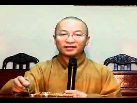 Vấn đáp: An Cư Và Đản Sinh (21/07/2009) video do Thích Nhật Từ giảng