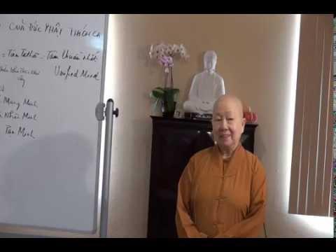 Tiến Trình Chứng Đạo Của Đức Phật Thích Ca