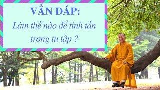 Vấn đáp: Tinh tấn trong đạo Phật và siêng năng của thế gian