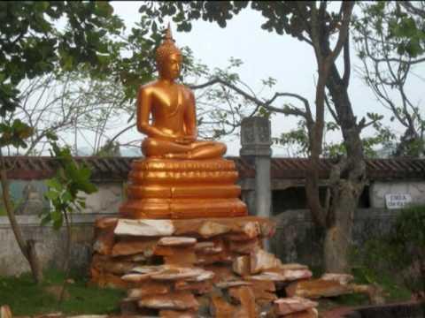 Chấp Tay Niệm Phật