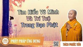 Tìm Hiểu Vô Minh và Trí Tuệ Trong Đạo Phật
