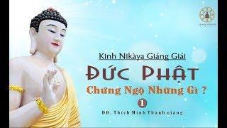 Kinh NIKAYA Giảng Giải - Đức Phật Chứng Ngộ Những Gì?