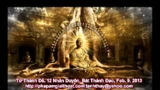 Tứ Thánh Đế, Mười Hai Nhân Duyên, Bát Thánh Đạo (2013)