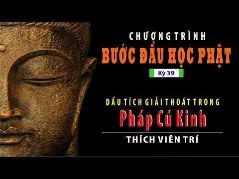 Bước Đầu Học Phật kỳ 39: Dấu Tích Giải Thoát Trong Pháp Cú Kinh