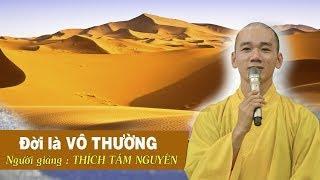 Đạo Phật - Ta chỉ là hạt cát nhỏ GIỮA BIỂN NGƯỜI MÊNH MÔNG