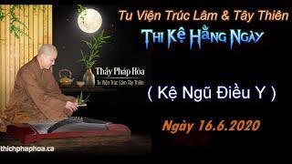 Từng Giọt Sữa Thơm 28-Thầy Thích Pháp Hòa(Tv Trúc Lâm, Ngày 16.6.2020)