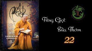 Từng Giọt Sữa Thơm 22 - Thầy Thích Pháp Hòa( Tv Trúc Lâm, Ngày 3.6.2020)