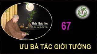 Từng Giọt Sữa Thơm 67 - Thầy Thích Pháp Hòa (Tv Trúc Lâm, Ngày 30.9.2020)