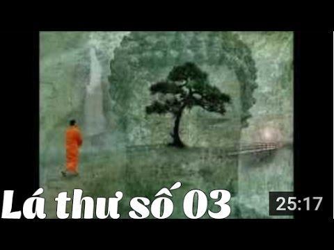 Thư Thầy Trò - Thư số 3 - Cuộc đời là trường Thiền lớn nhất