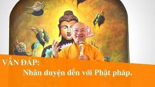 Vấn đáp: Nhân duyện đến với Phật pháp | Thích Nhật Từ