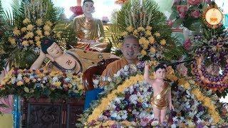 Giá trị Hạnh phúc - Phật đản chùa Liên Hoa, TPHCM