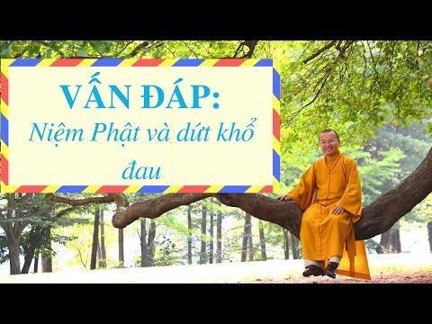 Vấn đáp: Niệm Phật và dứt khổ đau