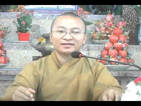 Quán chiếu Pháp để vượt khổ đau (02/07/2010) video do Thích Nhật Từ giảng