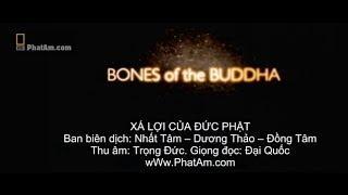 Sự thật về xá lợi của Đức Phật