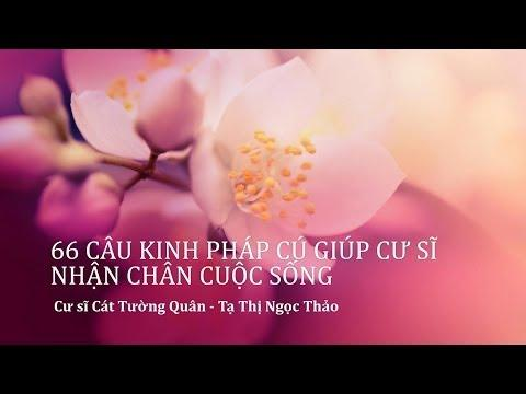 66 Câu Kinh Pháp Cú Giúp Cư Sĩ Nhận Chân Cuộc Sống (Có Phụ Đề)