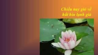 NHỚ MẸ - Thơ Nguyễn Quang Minh - Nhạc Võ Tá Hân - Ca sĩ Mai Hậu