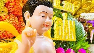 Tăng đoàn Chùa Giác Ngộ lạy vạn Phật mùa An Cư Kiết Hạ tại Chùa Giác Ngộ, ngày 02-06-2021