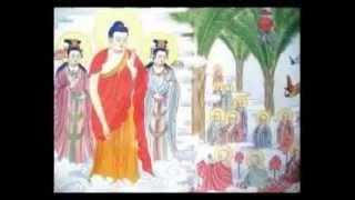 Hình Ảnh 48 Lời Nguyện Của Đức Phật A Di Đà